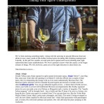 3.3.16 Robb Report Vices